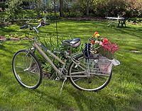 La bicicleta doméstica